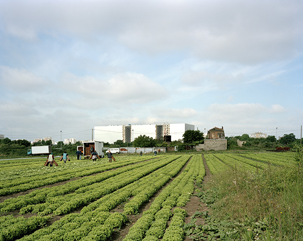 View of the National Archives from an agricultural field, Pierrefitte-sur-Seine, May 17, 2011